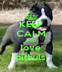 KEEP CALM AND love pitbuls - Personalised Poster A4 size