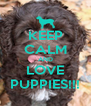 KEEP CALM AND LOVE PUPPIES!!! - Personalised Poster A4 size