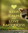 KEEP CALM AND LOVE RACCOONS - Personalised Poster A4 size