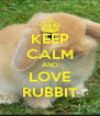 KEEP CALM AND LOVE RUBBIT - Personalised Poster A4 size