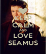 KEEP CALM AND LOVE SEAMUS - Personalised Poster A4 size