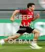 KEEP CALM AND Love sprint Of BALE - Personalised Poster A4 size