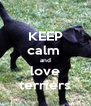 KEEP calm  and love terriers - Personalised Poster A4 size