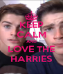 KEEP CALM AND LOVE THE HARRIES - Personalised Poster A4 size