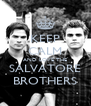 KEEP CALM AND LOVE THE SALVATORE BROTHERS - Personalised Poster A4 size