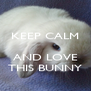 KEEP CALM   AND LOVE THIS BUNNY - Personalised Poster A4 size