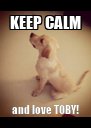 KEEP CALM and love TOBY! - Personalised Poster A4 size