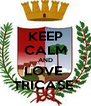 KEEP CALM AND LOVE  TRICASE  - Personalised Poster A4 size