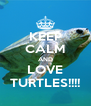 KEEP CALM AND LOVE TURTLES!!!! - Personalised Poster A4 size