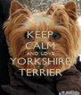 KEEP CALM AND LOVE YORKSHIRE TERRIER - Personalised Poster A4 size