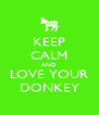 KEEP CALM AND LOVE YOUR DONKEY - Personalised Poster A4 size