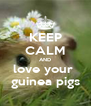 KEEP CALM AND love your  guinea pigs - Personalised Poster A4 size