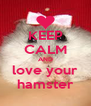 KEEP CALM AND love your hamster - Personalised Poster A4 size