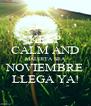 KEEP CALM AND MALDITA SEA NOVIEMBRE LLEGA YA! - Personalised Poster A4 size