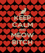 KEEP CALM AND MEOW BITCH - Personalised Poster A4 size