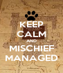 KEEP CALM AND MISCHIEF MANAGED - Personalised Poster A4 size