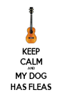 KEEP CALM AND MY DOG HAS FLEAS - Personalised Poster A4 size