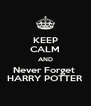 KEEP CALM AND Never Forget  HARRY POTTER - Personalised Poster A4 size