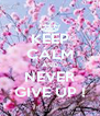 KEEP CALM AND NEVER GIVE UP ! - Personalised Poster A4 size