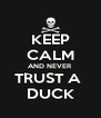 KEEP CALM AND NEVER TRUST A  DUCK - Personalised Poster A4 size