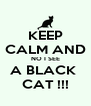 KEEP CALM AND NO I SEE A BLACK  CAT !!! - Personalised Poster A4 size