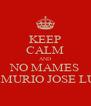 KEEP CALM AND NO MAMES SE MURIO JOSE LUIS - Personalised Poster A4 size