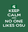 KEEP CALM AND NO ONE LIKES OSU - Personalised Poster A4 size