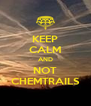 KEEP CALM AND NOT CHEMTRAILS - Personalised Poster A4 size