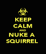 KEEP CALM AND NUKE A  SQUIRREL  - Personalised Poster A4 size