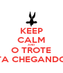 KEEP CALM AND O TROTE TA CHEGANDO - Personalised Poster A4 size