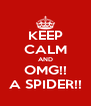 KEEP CALM AND OMG!! A SPIDER!! - Personalised Poster A4 size