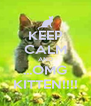 KEEP CALM AND ...OMG KITTEN!!!! - Personalised Poster A4 size
