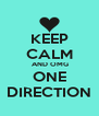 KEEP CALM  AND OMG ONE DIRECTION - Personalised Poster A4 size