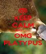 KEEP CALM AND......... OMG PLATYPUS - Personalised Poster A4 size