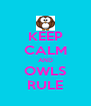 KEEP CALM AND OWLS RULE - Personalised Poster A4 size