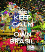 KEEP CALM AND OWN BRASIL - Personalised Poster A4 size