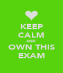 KEEP CALM AND OWN THIS EXAM - Personalised Poster A4 size