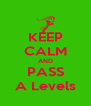 KEEP CALM AND PASS A Levels - Personalised Poster A4 size