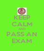 KEEP CALM AND PASS AN EXAM - Personalised Poster A4 size