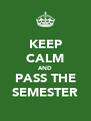 KEEP CALM AND PASS THE SEMESTER - Personalised Poster A4 size