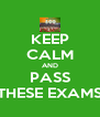 KEEP CALM AND PASS THESE EXAMS - Personalised Poster A4 size