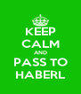 KEEP CALM AND PASS TO HABERL - Personalised Poster A4 size