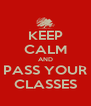 KEEP CALM AND PASS YOUR CLASSES - Personalised Poster A4 size