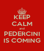 KEEP CALM and PEDERCINI IS COMING - Personalised Poster A4 size