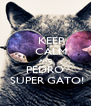 KEEP     CALM  AND PEDRO  SUPER GATO! - Personalised Poster A4 size