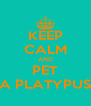 KEEP CALM AND PET A PLATYPUS - Personalised Poster A4 size