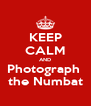 KEEP CALM AND Photograph  the Numbat - Personalised Poster A4 size