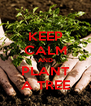 KEEP CALM AND PLANT A TREE - Personalised Poster A4 size