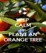 KEEP CALM AND PLANT AN ORANGE TREE - Personalised Poster A4 size