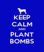KEEP CALM AND PLANT BOMBS - Personalised Poster A4 size